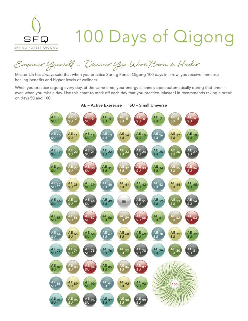 100 day challenge